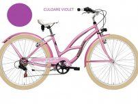 Diferentele majore intre bicicletele de dama si cele pentru barbati