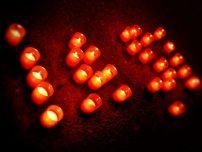 Ora Pamantului la Iasi - 31 martie 2012